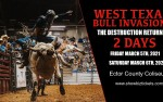 Image for (1) West Texas Bull Invasion