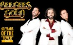 Image for Bee Gees Gold