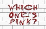 Image for Which One's Pink? - A Tribute To The Music of Pink Floyd